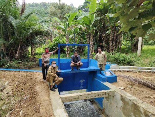 Dam Parit Dongkrak Produksi Padi di Toli Toli